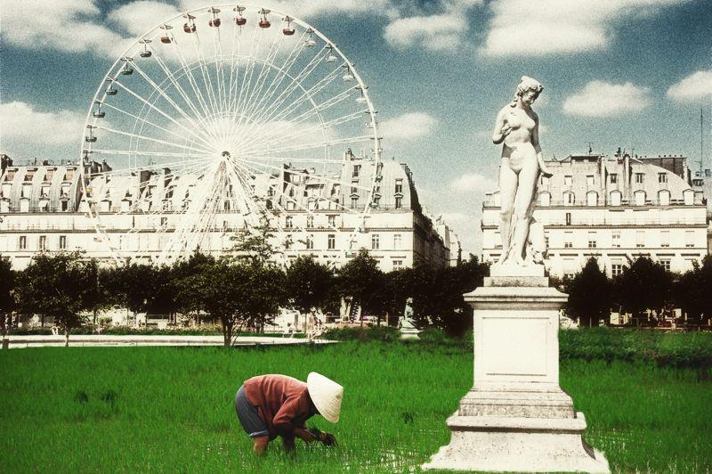 Bons baisers des Tuileries.