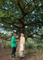 Sadghuru et jacques Rocher devant un arbre vénérable. Deux hommes unis pour réussir un pari fou. Chaque année, disparait en forêt la surface du Portugal.
