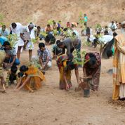 100 millions d'arbres pour le Tamil Nadu