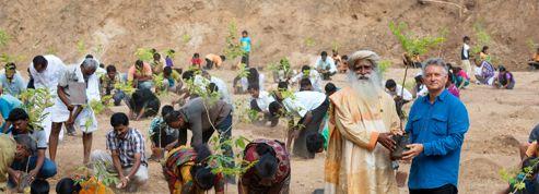 Plantation de 100 millions d'arbres pour le Tamil Nadu