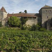 Vignes : les Français, premiers investisseurs