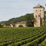 La production mondiale de vin à son plus bas