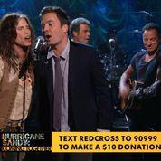 Un grand concert pour les victimes de Sandy