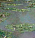 L'un des célèbres  Nymphéas  de Claude Monet, vendu 43,76 millions de dollars. (Christie's)