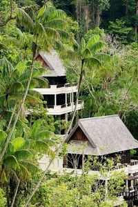 Le Sukau Rainforest Lodge.
