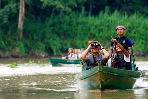 L'éco-tourisme s'est développé au début des années 1990 sur le Kinabatangan. Lors des sorties en bateau, on peut apercevoir de nombreux oiseaux. Parmi les 300 espèces recensées dans la région, le superbe calao rhinocéros.