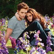 Twilight 4 part. 2 : un final sans surprise