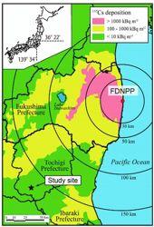 Carte du site de l'étude, avec les mesures de contamination autour de la centrale de Fukushima. Crédit: AGU