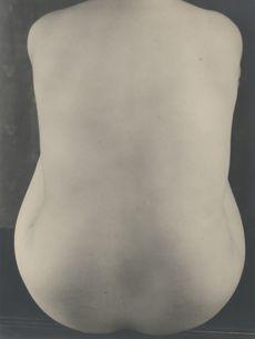 Nude Study IV  d'Eward Weston, 1925, Mexico. À 280.000 euros, il s'agit de l'une des photographies les plus chères de la foire. Crédits photo: Courtesy Galerie Johannes Faber