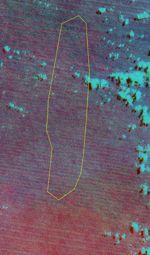 Image couleur Landsat 5 centrée sur la position de Sandy Island. Crédit NASA/USGS/Geo212.