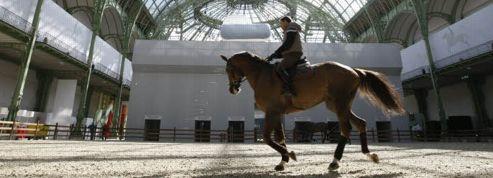 Le monde du cheval mobilisé contre une hausse de la TVA