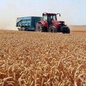 Hausse des revenus agricoles en 2012