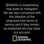 Le message posté par National Geographic sur Instagram.