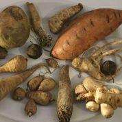 Les légumes anciens font un tabac