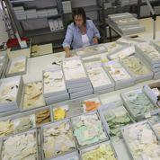 Allemagne: le puzzle de la Stasi reconstitué
