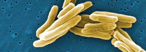 Un nouvel antibiotique contre la tuberculose