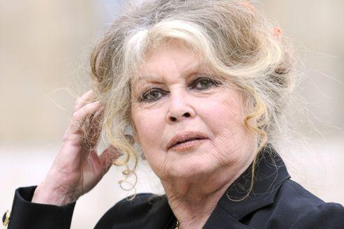 Brigitte Bardot, en septembre 2007, lors d'un rendez-vous à l'Élysée.