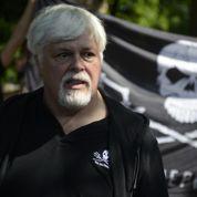 Watson fuit Interpol et retrouve les baleines