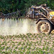 Interdit, le lindane pollue encore les sols