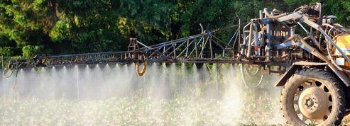 Interdit en 1998, le lindane pollue encore les sols