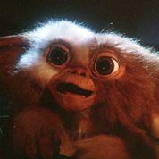 Warner Bros envisage un reboot des Gremlins