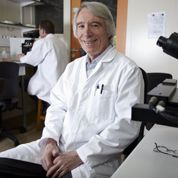 BisphénolA: ses méfaits prouvés in vitro