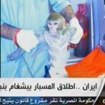 Image diffusée par la télévision iranienne en arabe al-Alam.