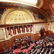 Mariage gay: majorité pas si simple au Sénat