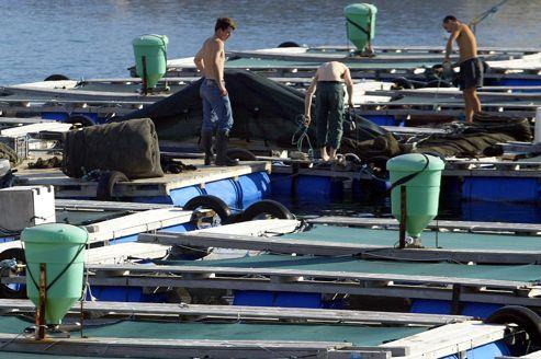 Ferme aquacole au large de Marseille.