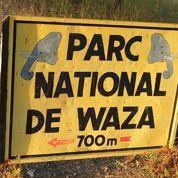 Sept Français enlevés au nord du Cameroun