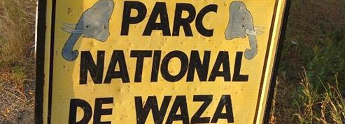 Sept touristes français enlevés au nord du Cameroun