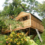 Les cinq cabanes aux Caraïbes