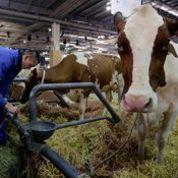 Hollande ne séduit pas les agriculteurs