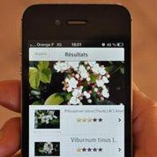Identifier la flore avec un smartphone