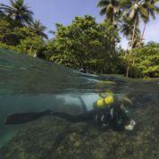Papouasie: l'expédition scientifique de retour