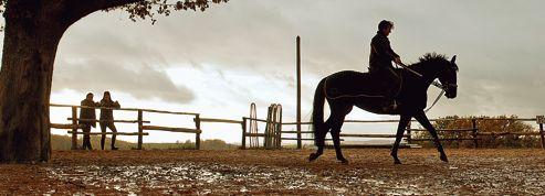 Jappeloup : la résistible ascension du «Centaure»