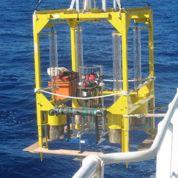 Il y a de la vie dans les grands fonds des océans
