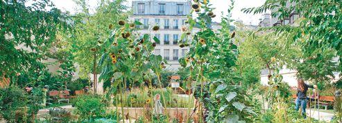 Paris: les jardins partagés arrivent à l'Ouest