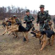 La Chine gronde son protégé nord-coréen