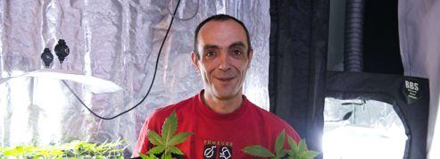 Le père des «cannabis social clubs» jugé à Tours