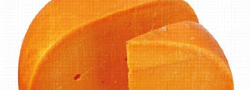 La mimolette interdite de séjour aux États-Unis