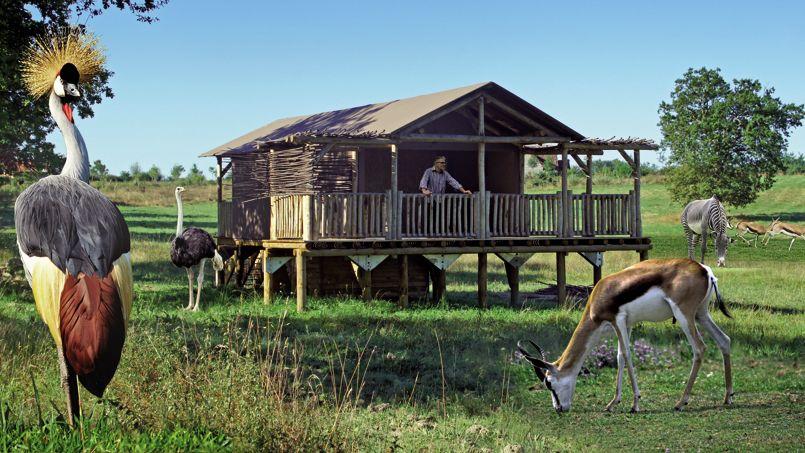 Les zoos proposent aux visiteurs d'expérimenter les joies d'une immersion dans la savane africaine en ouvrant des hébergements, comme les lodges du Pal dans l'Allier (notre photo). Crédit: © Le PAL.