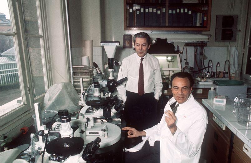 François Jacob (à droite) et Jacques Monod, ici en 1971 dans leur laboratoire de l'Institut Pasteur, à Paris. Les deux hommes ont remporté le prix Nobel de médecine en 1965.