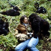 Journée de la terre: 5films pour la planète