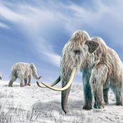Peut-on faire renaître des espèces éteintes?