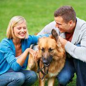 Assurance santé chien et chat: prise en charge