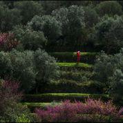 Golfs en Toscane, la dolce vita !