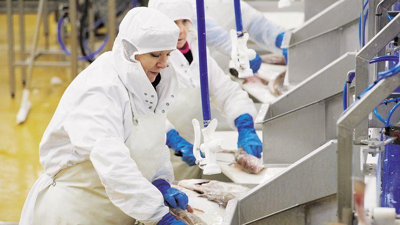 L'usine Capitaine Houat de Lanester (Morbihan). Le site appartient à Intermarché, qui possède aussi la première flotte de pêche française.