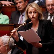 Les Verts s'affirment à l'Assemblée