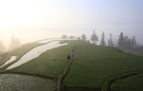 En Chine, voyage sur les terres du peuple Hmong